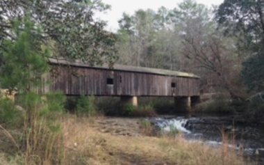 Coheelee Covered Bridge GA