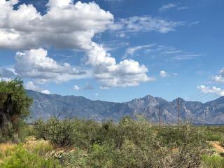 Oracle Mountains