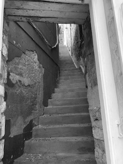Ydra bw steps
